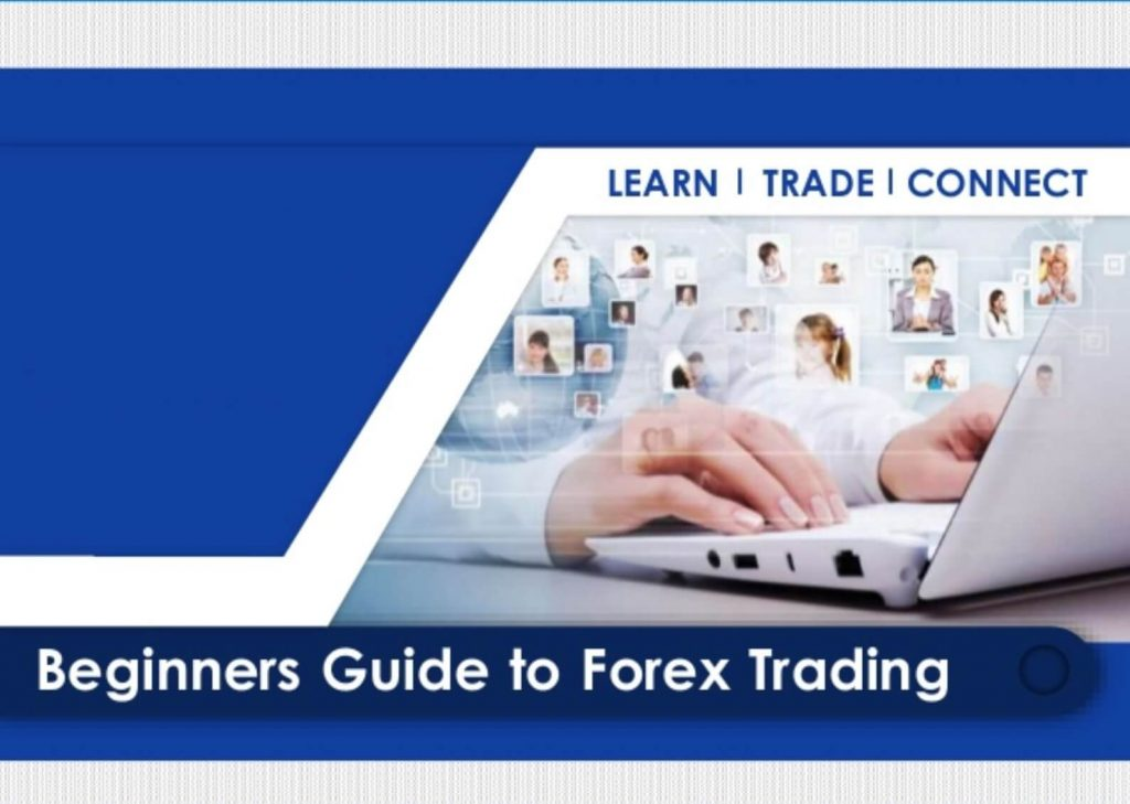 Your Guide to Forex Trading