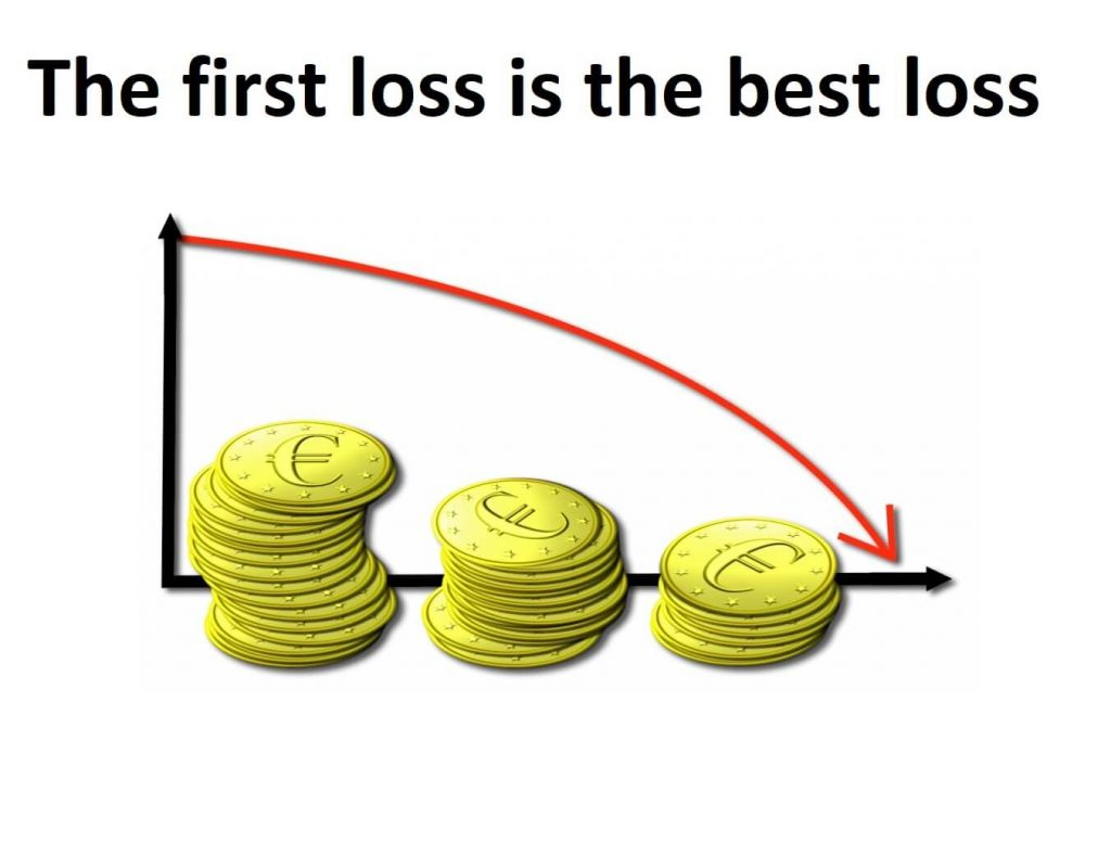 The first loss is the best loss